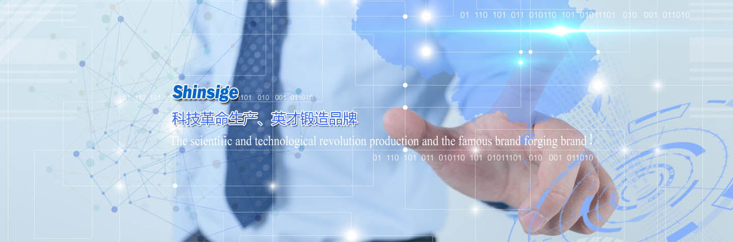 1Suzhou Shinsige Electronics Technology Co.,Ltd.